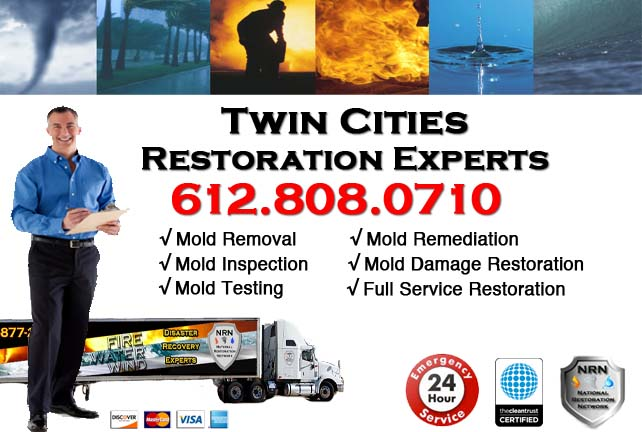 Twin Cities Mold Remediation