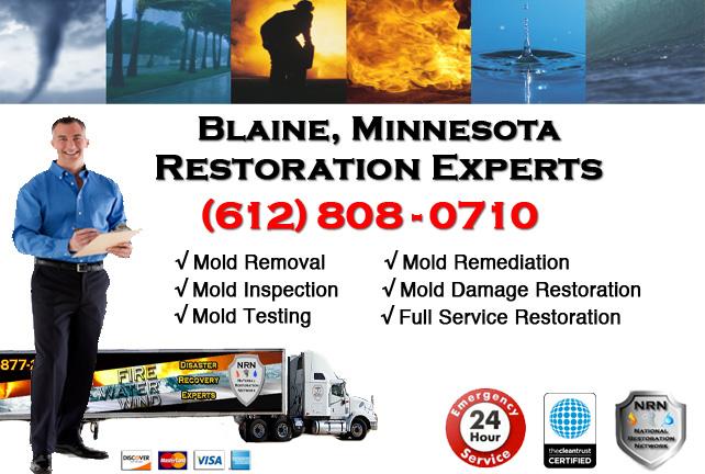 Blaine Mold Remediation