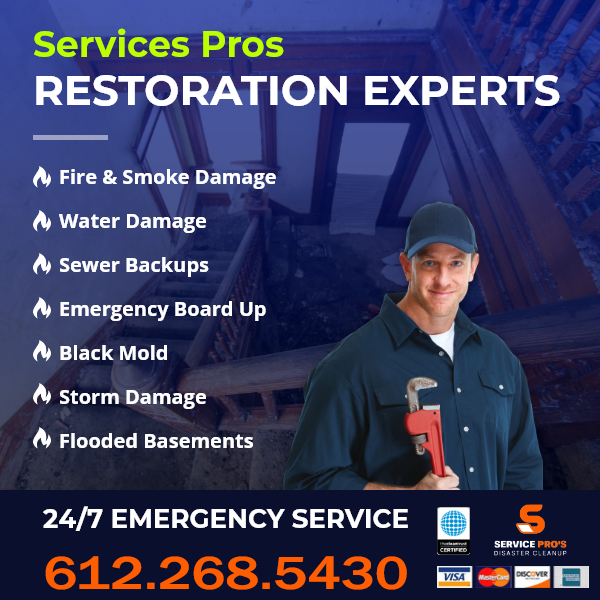 Coon Rapids MN Mold Removal